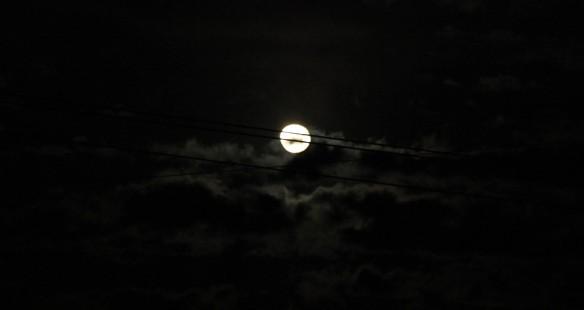 moonshare2
